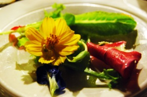Bohol Bee Farm garden salad